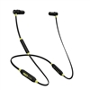 ISOtunes Pro Earbuds IT-02
